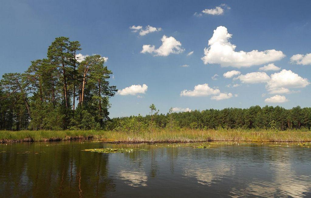 Комплексна пам'ятка природи. Святе озеро.